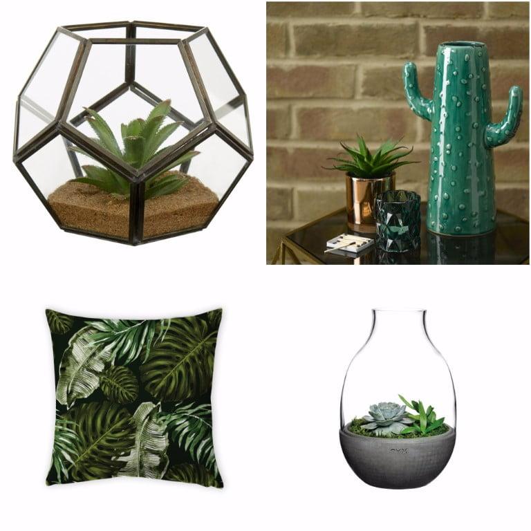 Amara terrarium - george home terrarium - George Home Botanical Cactus - charlotte jade Hybrid Flora Velvet Cushion