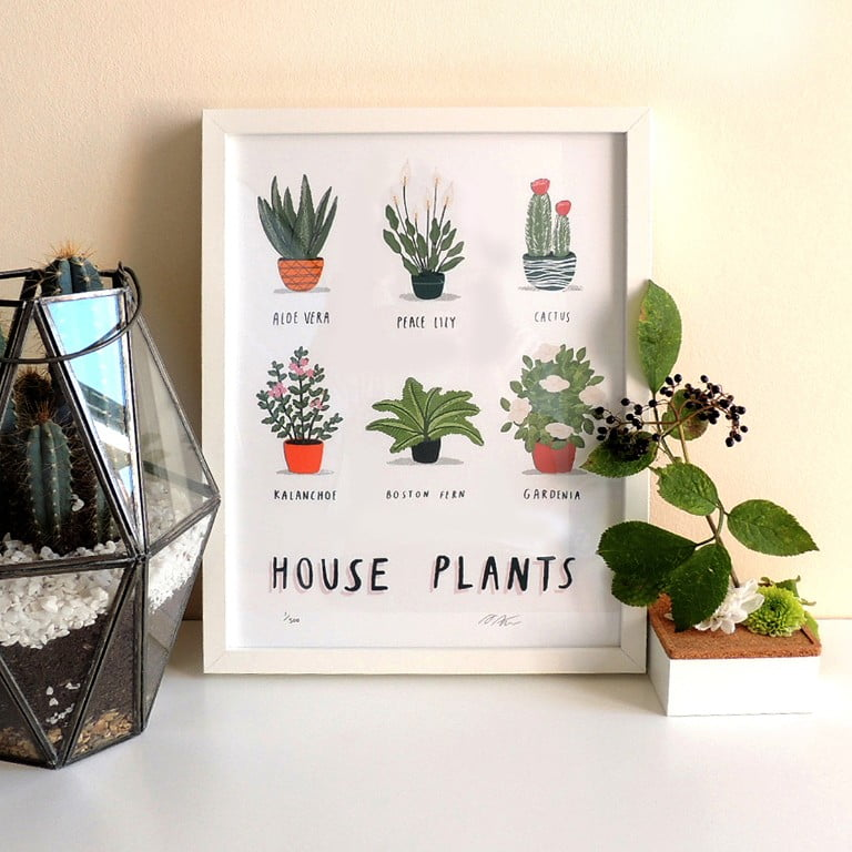ArtfinderHouse Plants Limited Edition Art Print Alex Foster