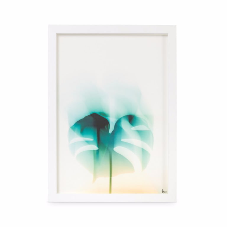 Oliver Bonas Botanical Leave Print Wall Art