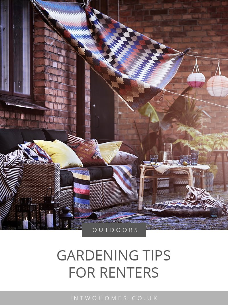 Gardening Tips for Renters and Small Gardens